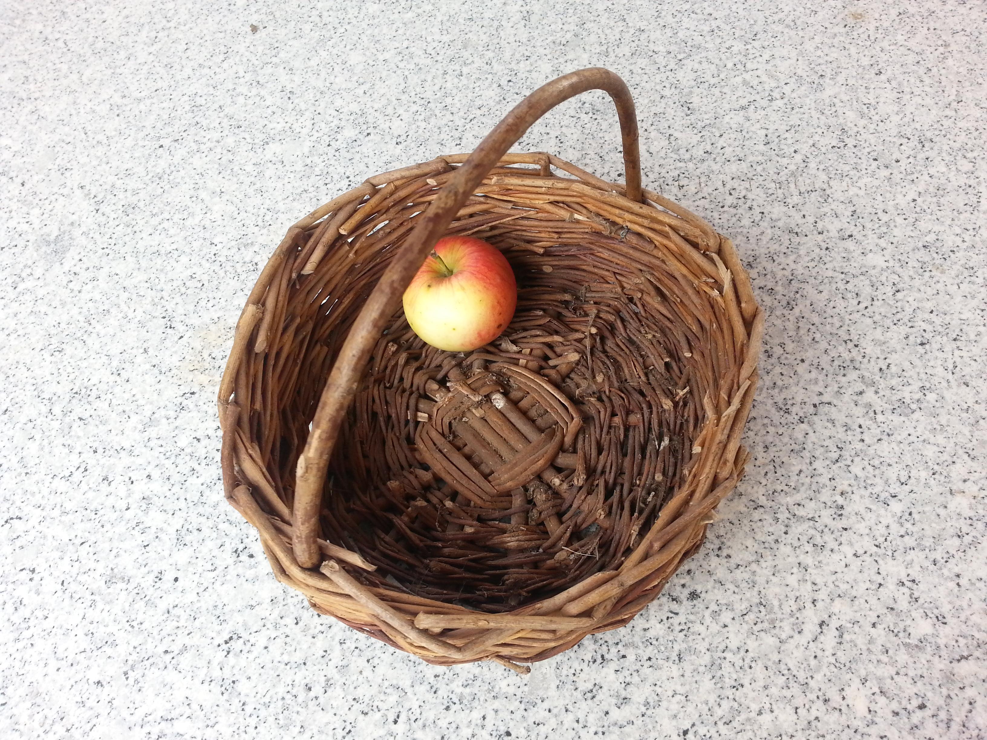 manzana- la incomodidad de los vegetales feos